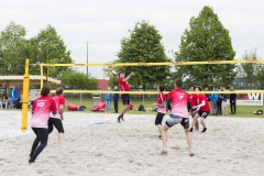 Fronius Volley Team vs Networkers Wels